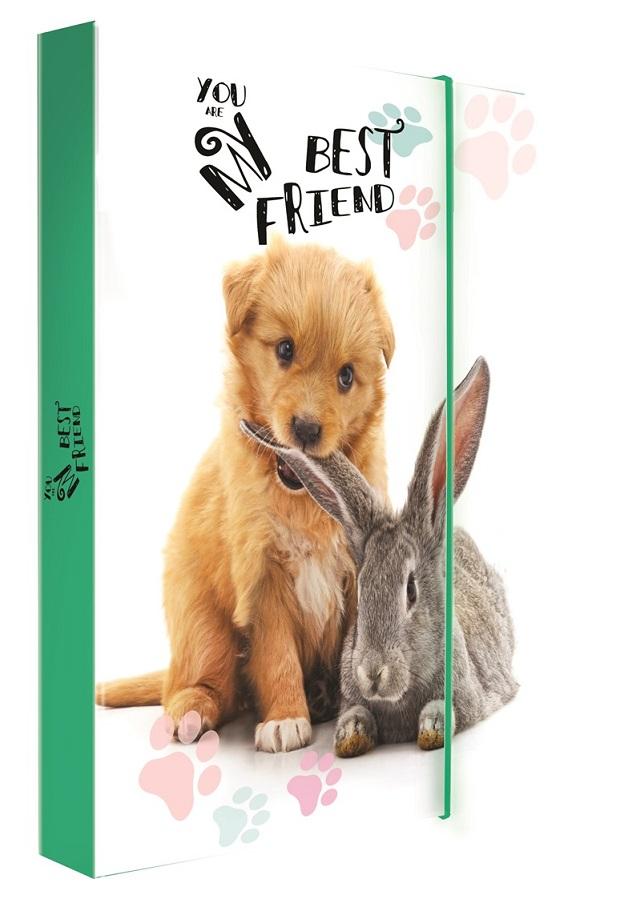 Box na zošity A4 Zvieratká