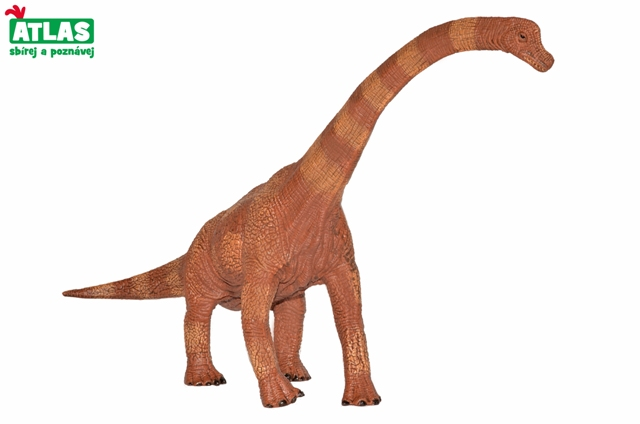 Dino Brachiosaurus 30cm
