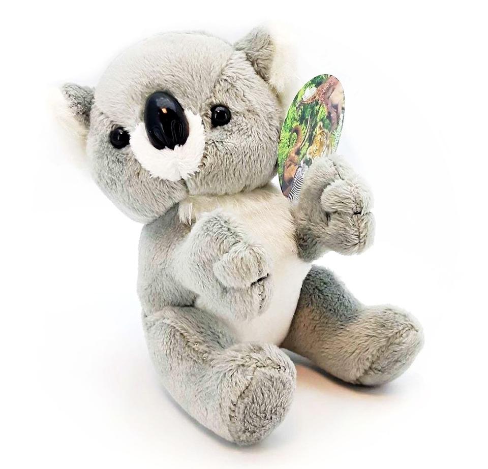 Plyšová koala 14cm