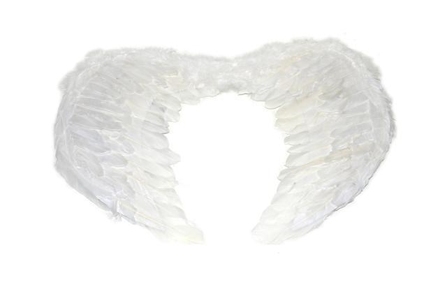 Krídla anjelské s perím