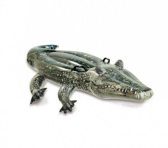 Intex 57551 Krokodíl nafukovačka 170x86cm