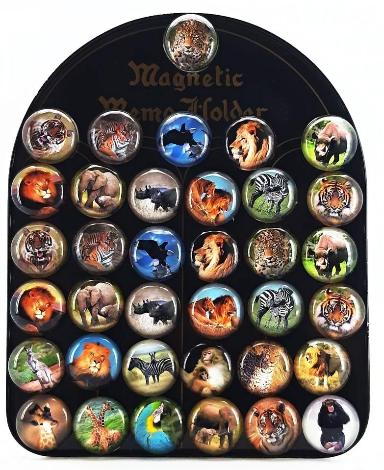 Magnetky zvieratká Afrika 3,5cm