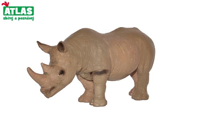 Nosorožec africký