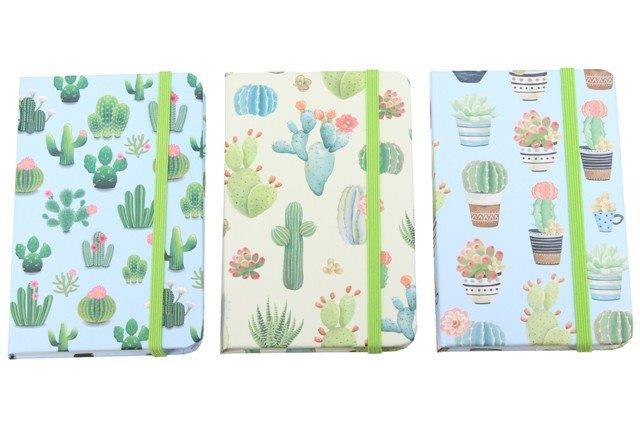Notes s kaktusmi