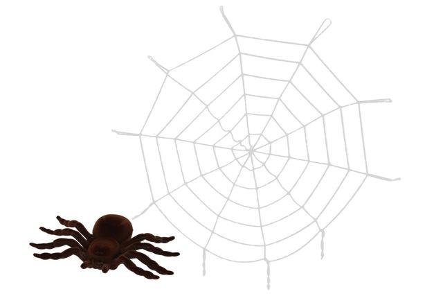 Pavučina s pavúkom 1,5m