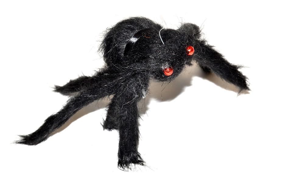 Pavúk čierny 30cm