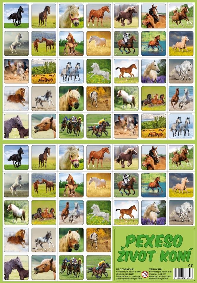 Pexeso, Život koní