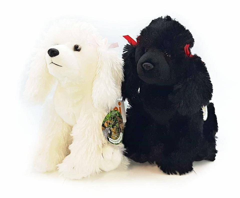 Plyšový psík pudlík 30cm 2druhy - biela