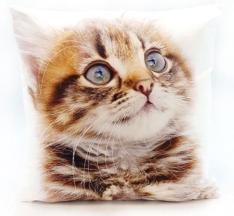 Vankuš mačka 33x33cm